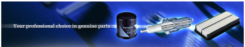 Your professional choice in genuine parts